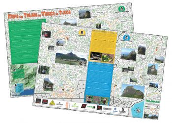 mapa da floresta